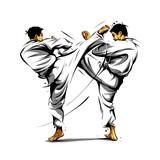karate action 3 - 181611477
