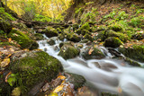 Landscape photograph of yedigoller falls in the yedigoller National Park of Bolu,Turkey.