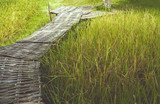 Bamboo walkway and rice fields / Background photo : film style photography