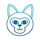 Cat head cartoon icon vector illustration graphic design