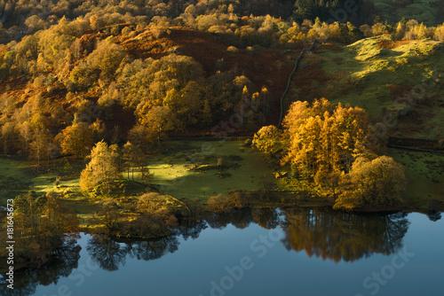 Papiers peints Marron chocolat Morning sunlight hitting Autumn tree's reflecting in a calm Loughrigg Tarn. Taken in the English Lake District.