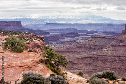 Foto op Canvas Zalm Canyonlands Utah