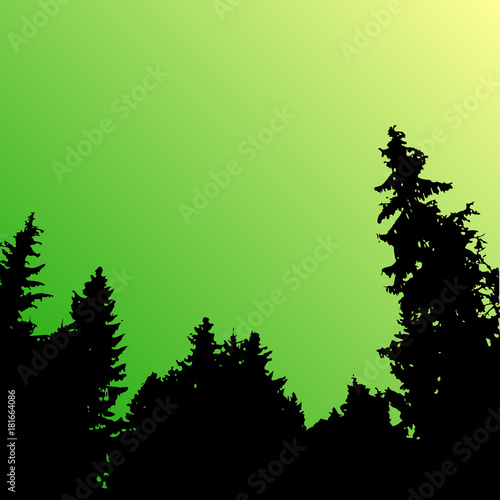Poster Lime groen Vector forest landscape silhouette. Realistic trees, woods silhouettes in night and evening sky. Outdoor nature scene with pine and spruces