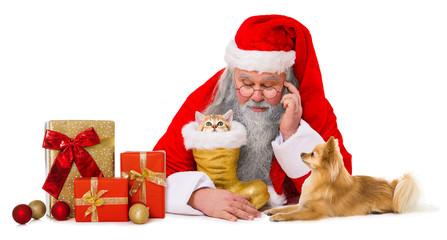 Weihnachtsmann mit Hund und Katze