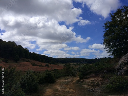 Foto op Plexiglas Grijze traf. Paseo por la Sierra