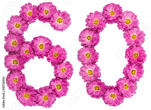 Arabic numeral 60, sixty, from flowers of chrysanthemum, isolated on white backg Poster