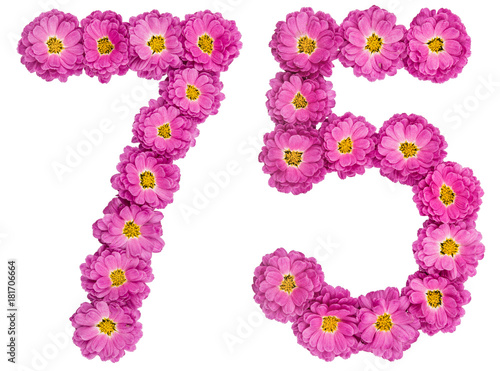 Arabic numeral 75, seventy five, from flowers of chrysanthemum, isolated on whit Poster