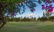 perfect Golf Course Fairway and Green