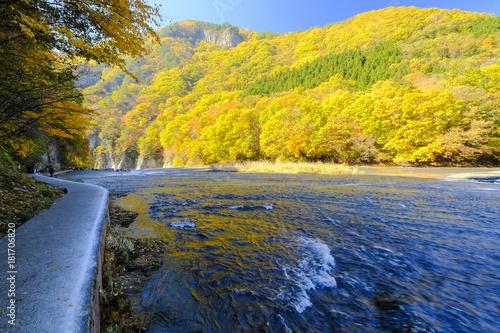Foto op Plexiglas Oranje 秋の吹割渓谷と遊歩道