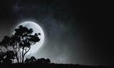 Full moon in sky - 181741034