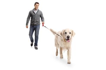 Young man walking a dog