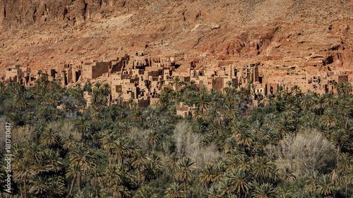 Fotobehang Marokko Palmeraie marocaine