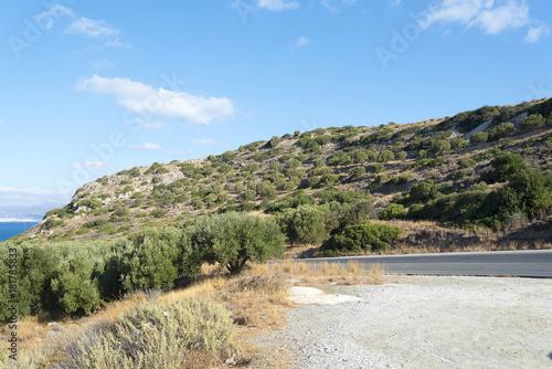 Plexiglas Lente The trees along the road asfaltirani on the island of Crete.