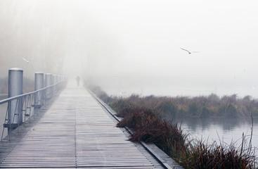 matin brumeux au parc du Heyritz à Strasbourg