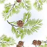 Seamless texture conifer Branches Pine  with pine cones  winter snowy natural background vector illustration editable hand draw - 181791629