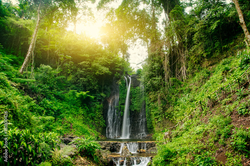 Beautiful waterfall in green forest. Nature landscape background - 181800426