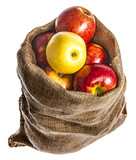 a sack with apples isolated on a white background - 181800671