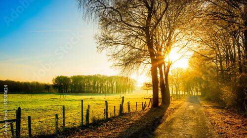 Staande foto Ochtendgloren Autumn scene with rural road in the light of the rising sun