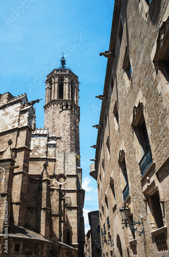 Fotobehang Barcelona Barcelona Kathedrale und Häuser der Altstadt