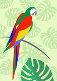 parrot whit floral summer pattern background, vector for wallpapers, web page backgrounds, surface textures, textile. - 181826681
