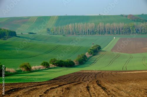 Fotobehang Pistache Landscape called Moravian Tuscany, Moravia, Czech Republic, near Kyjov