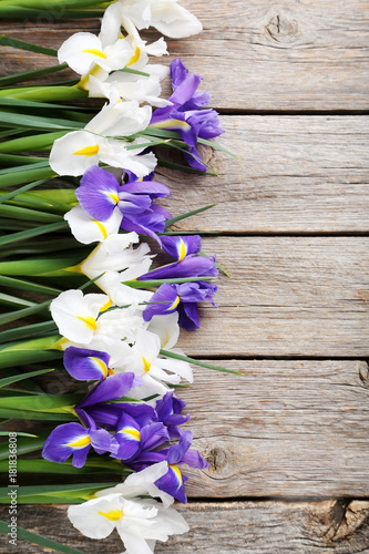 Plexiglas Iris Bouquet of iris flowers on grey wooden table