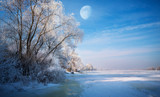 Beautiful tree in winter landscape - 181837047