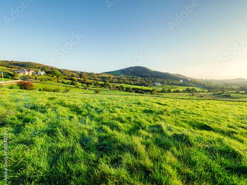 Fotobehang Lente Early Autumn countryside morning,Northern Ireland