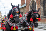 Dressed up horses during holiday