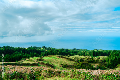 In de dag Pool Green landscape of Azores