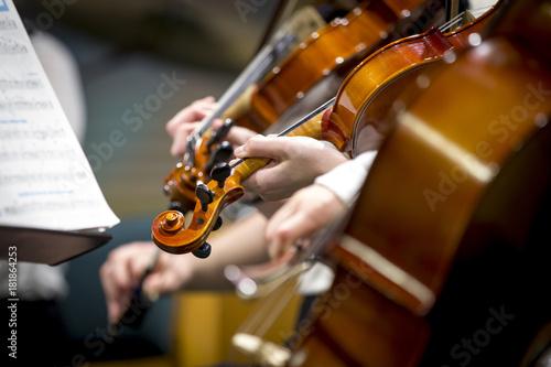 Fotobehang Muziek Children orchestra violins