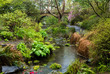 A wooden bridge and stream in Portland's Crystal Springs Rhodode