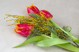 Spring bouquet of red tulips and Mimosa