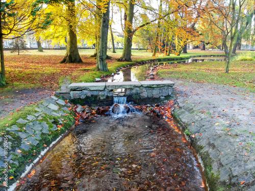 Foto op Canvas Texas Gdansk city park brook in autumn colors