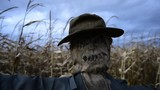 Scary scarecrow in a hat - 181946262