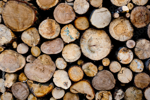 Tuinposter Brandhout textuur Wood texture background of cut logs. Pile of logs.