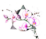 orchids - 181968036