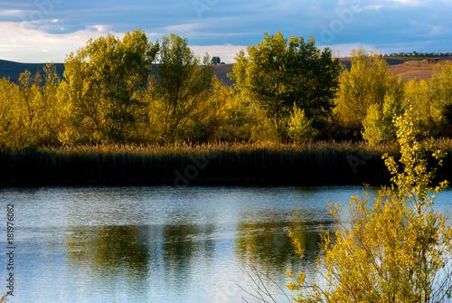 Paesaggio autunnale con alberi riflessi nell'acqua del laghetto