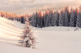 Dramatic wintry scene with snowy trees. - 181978842