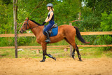 Jockey girl doing horse riding on countryside meadow - 181981894