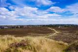 Dunes near Kampen on the island of Sylt, Germany - 181983631