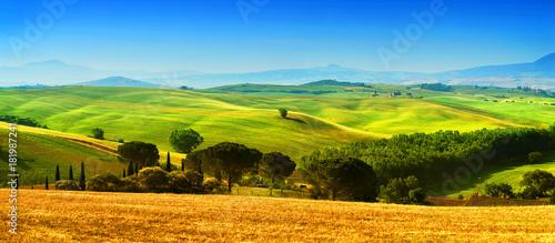 Plexiglas Toscane Beautiful landscape from Tuscany, Italy