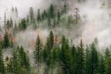 Yosemite 3 - 182012082