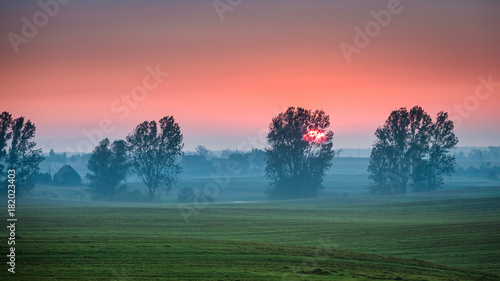 Fotobehang Lente Beautiful sunrise at foggy field and sun in summer, Europe