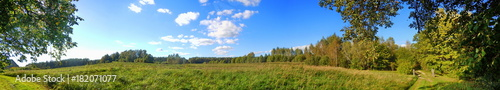 Panoramic view of meadow  - 182071077
