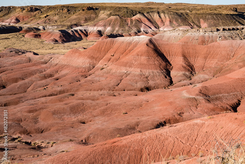 Foto op Canvas Arizona Arizona Painted Desert