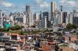 Social Contrast - Favela and buildings