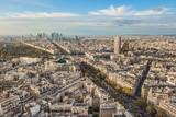 Flying above roofs of Paris, France, november 2017