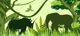 Elephant and rhino green silhouettes in african savannah, vector illustration.