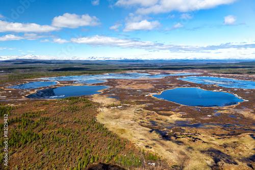 Northern landscape Poster
